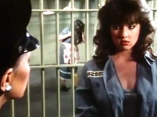 Desperate Women - 1985
